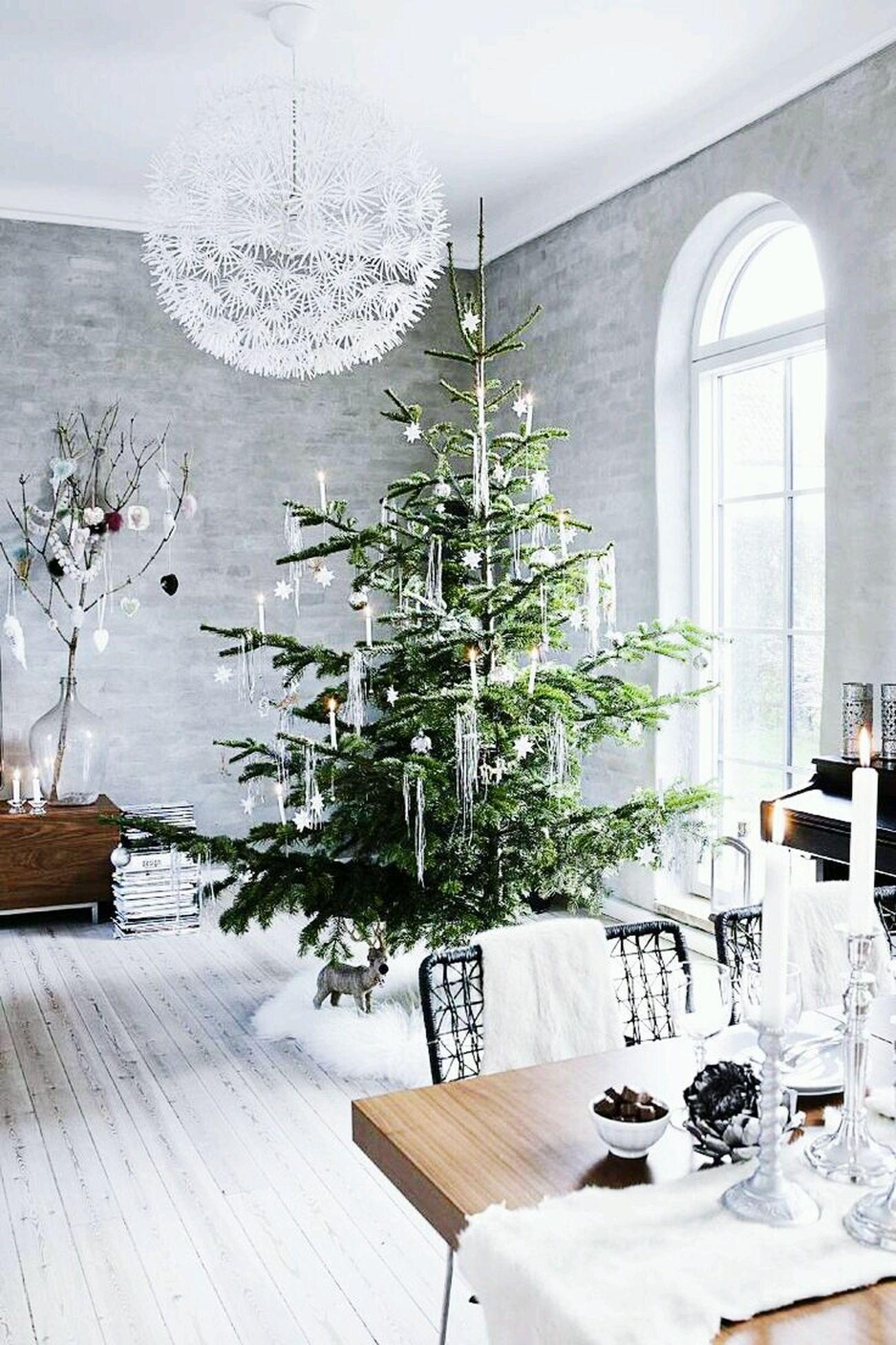 Merry chrismas?? Merry Christmas! Merry Xmas! Christmas MerryChristmas Chrismastime