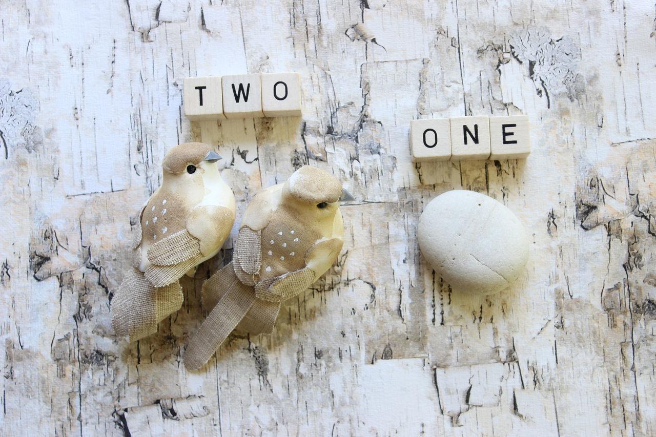 Two birds one stone Business Efficiency Idiom Multi Tasking One Stone Phrase Skills  Strategy Two Birds