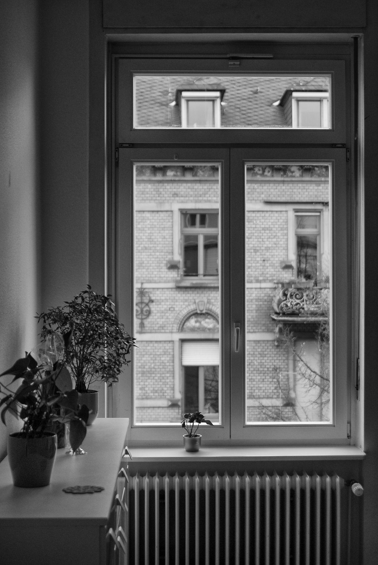 Diningroom Wiesbaden Floor Chair Table Wood Blackandwhite Black And White Black & White Blackandwhite Photography Black&white Black And White Photography Blackandwhitephotography No People Diningroom Window Windows Window View