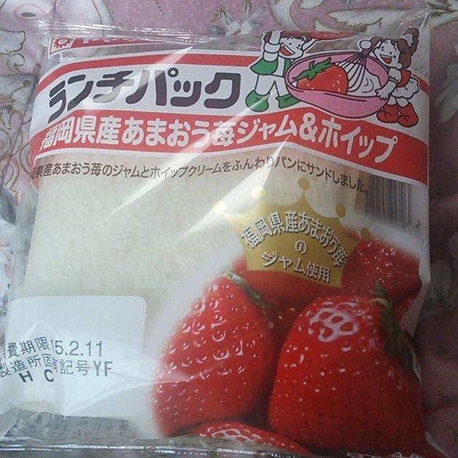 ランチパック ランチパックマニア ランチパック生活 ランチ いちご福岡あまおう후쿠오카딸기Fukuokastrawberry
