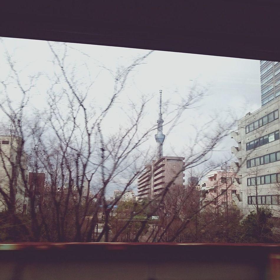 Bye👋👋👋Tokyo 。Tokyo,Japan 晴空塔