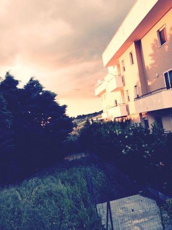 Con le amiche Taking Photos Tramonto Sunset Arancione Orange Trees Alberi Hello World Summertime Summernight