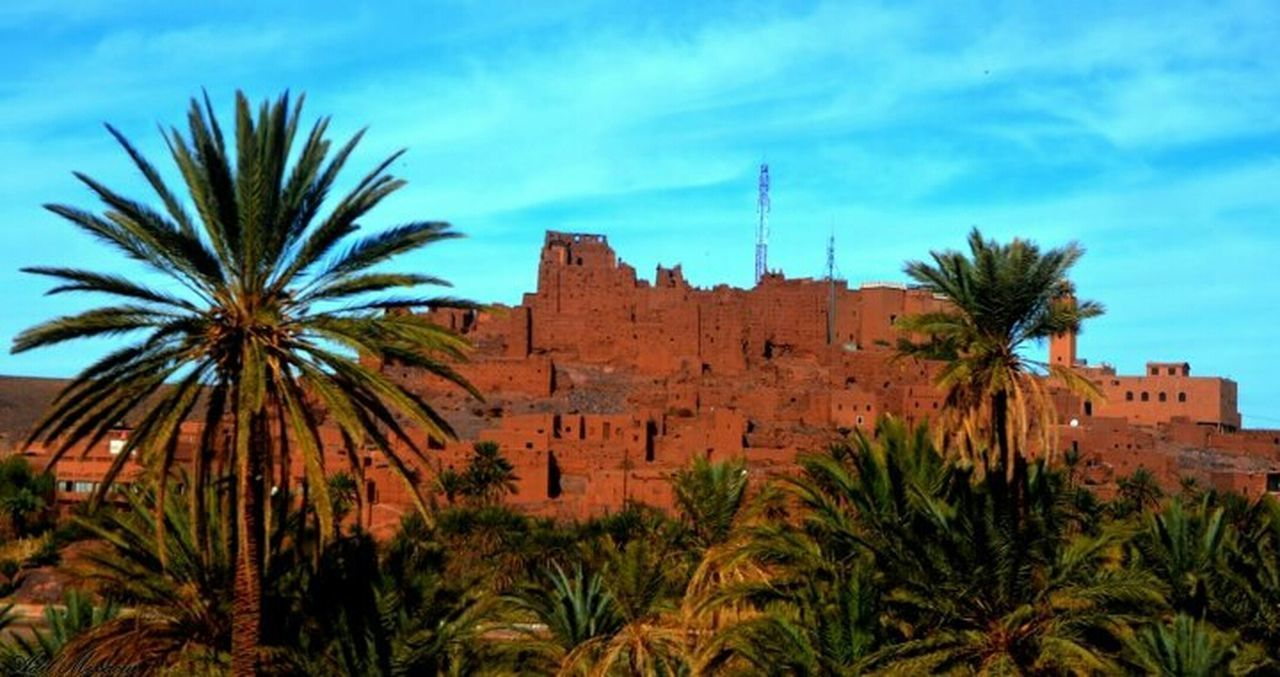 Hanging Out Relaxing Nature Sky Taking Photos Photography Oasis Kasbah