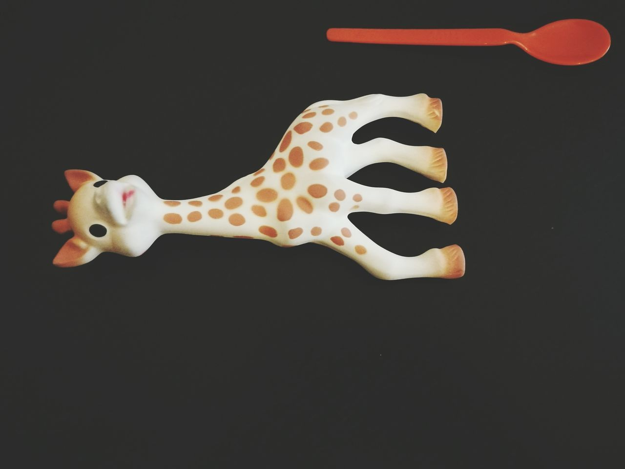 Black Background Single Object Animal Body Part Bone  No People Animal Bone Light And Shadow Alphabet Black Background Sophie Toystory Giraffe Kids Life Day Baby Spoon Zigzag Close-up Motherhood Spoon New Frontiers Hot Dog Unhealthy Eating Beauty In Nature New Life Everyday Lives