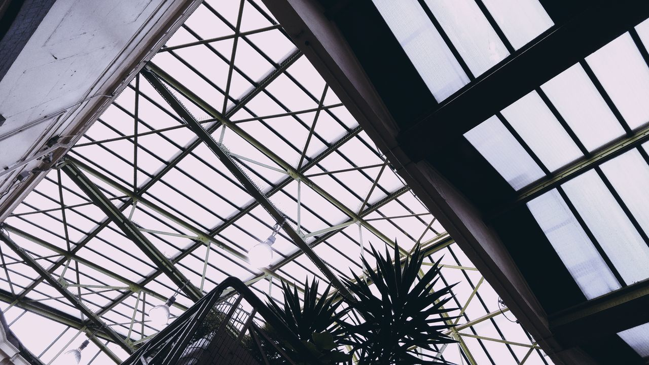 Architecture Built Structure Ceiling Day Greenhouse Indoors  Low Angle View Nature No People Plant Sky