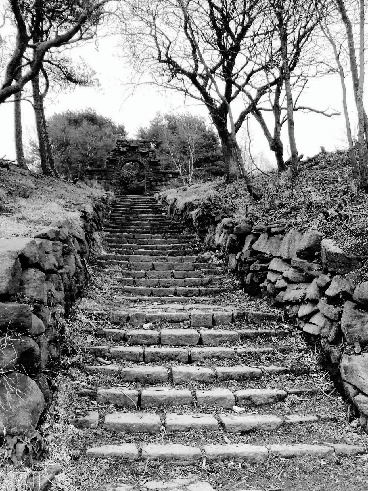 Steps Steps And Staircases Low Angle View Stone Wall Stone Arch Tree Doorway Looking Up China Garden Rivington