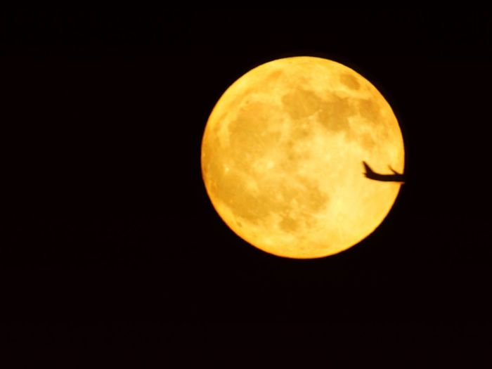plane crossing the moon Moon Night Astronomy Planetary Moon Beauty In Nature Scenics Clear Sky Full Moon Majestic Moon Surface Dark Close-up Tranquil Scene Nature Sphere Tranquility Exploration Circle Outdoors Space Exploration
