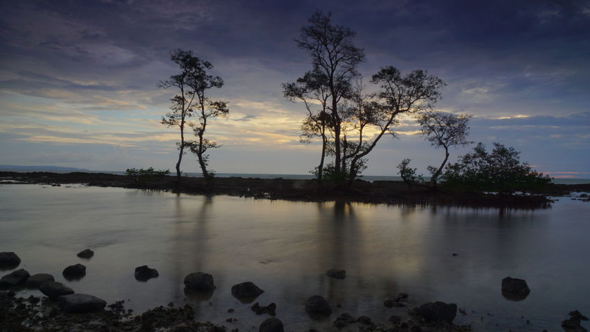 Laguna beach Carita Banten Photography By @jgawibowo Shot By @jgawibowo Shot By Arif Wibowo Landscape Sunset Reflection Cloud - Sky Tree Lake Outdoors Silhouette Tranquility Tranquil Scene Scenics Beauty In Nature Water