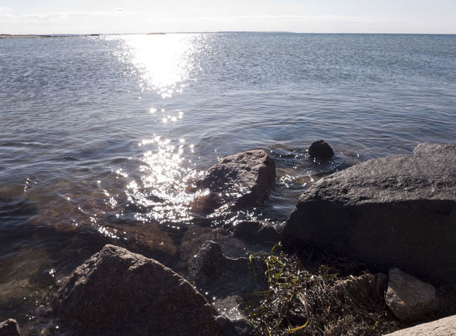 Baltic Sea Beach Beauty In Nature Coast Coastline Evening Heidkate Horizon Over Water Landscape Rock Rock - Object Scenics Sea Sea Life Seaside Shore Summertime Tranquil Scene Tranquility Vacations Water Wischhafen