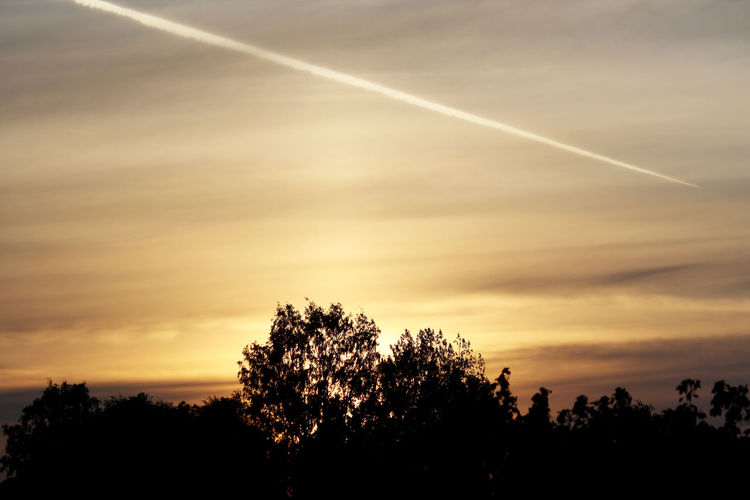 Exceptional Photographs Evening Sky Sunlight Sunset And Clouds  Backgrounds Bare Tree Beauty In Nature Branch Contrail Day Dusk Nature No People Outdoors Scenics Silhouette Sky Sun Sunset Tranquil Scene Tranquility Tree Trees And Sky Vapor Trail