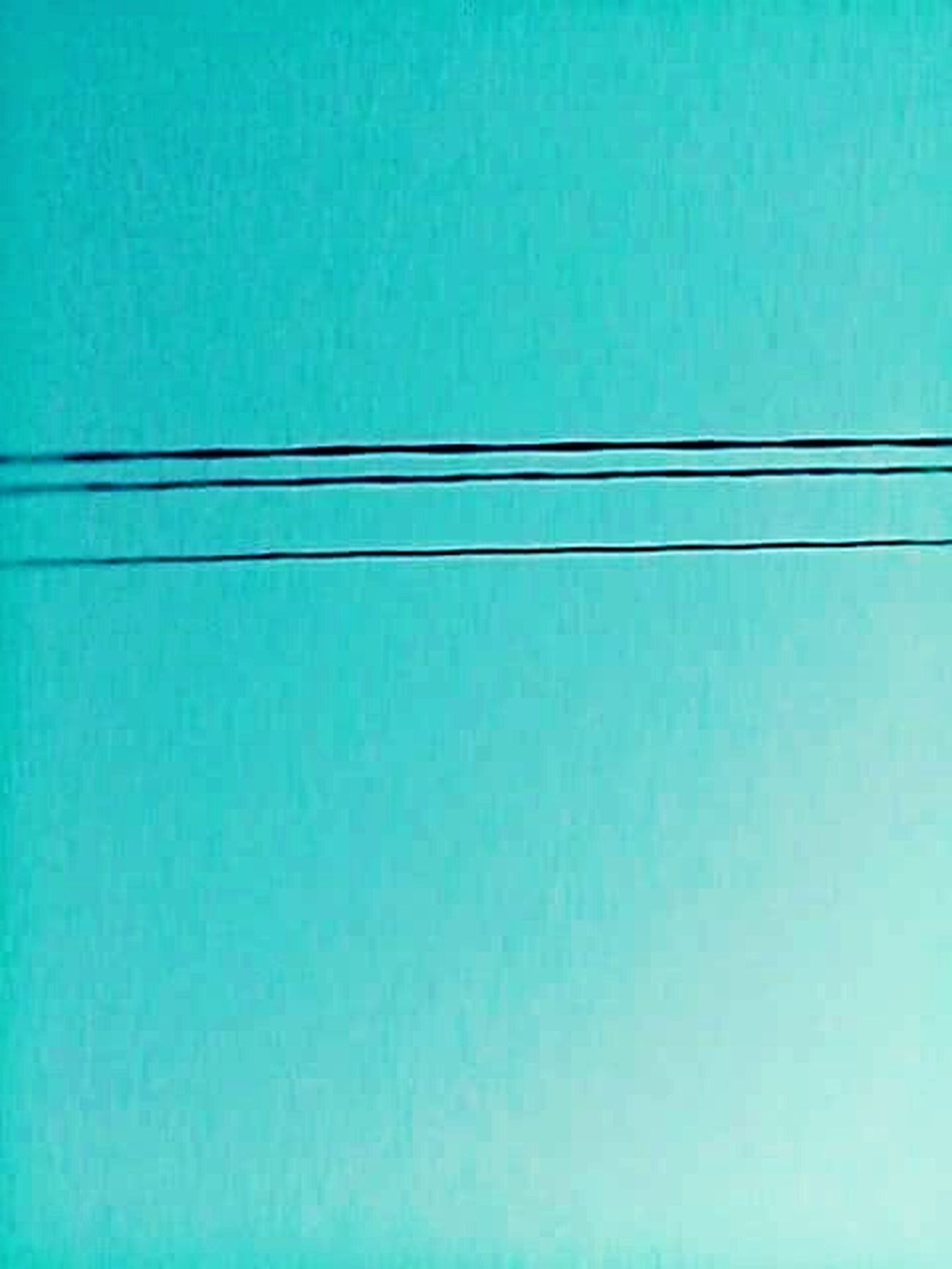 Smallthingsthatmakemehappy Small Things Electricity Cable Mobilephotography Mobile Photography PhonePhotography Phonecamera Wallpaper Sky Small Detail Electricity  Electric Lines