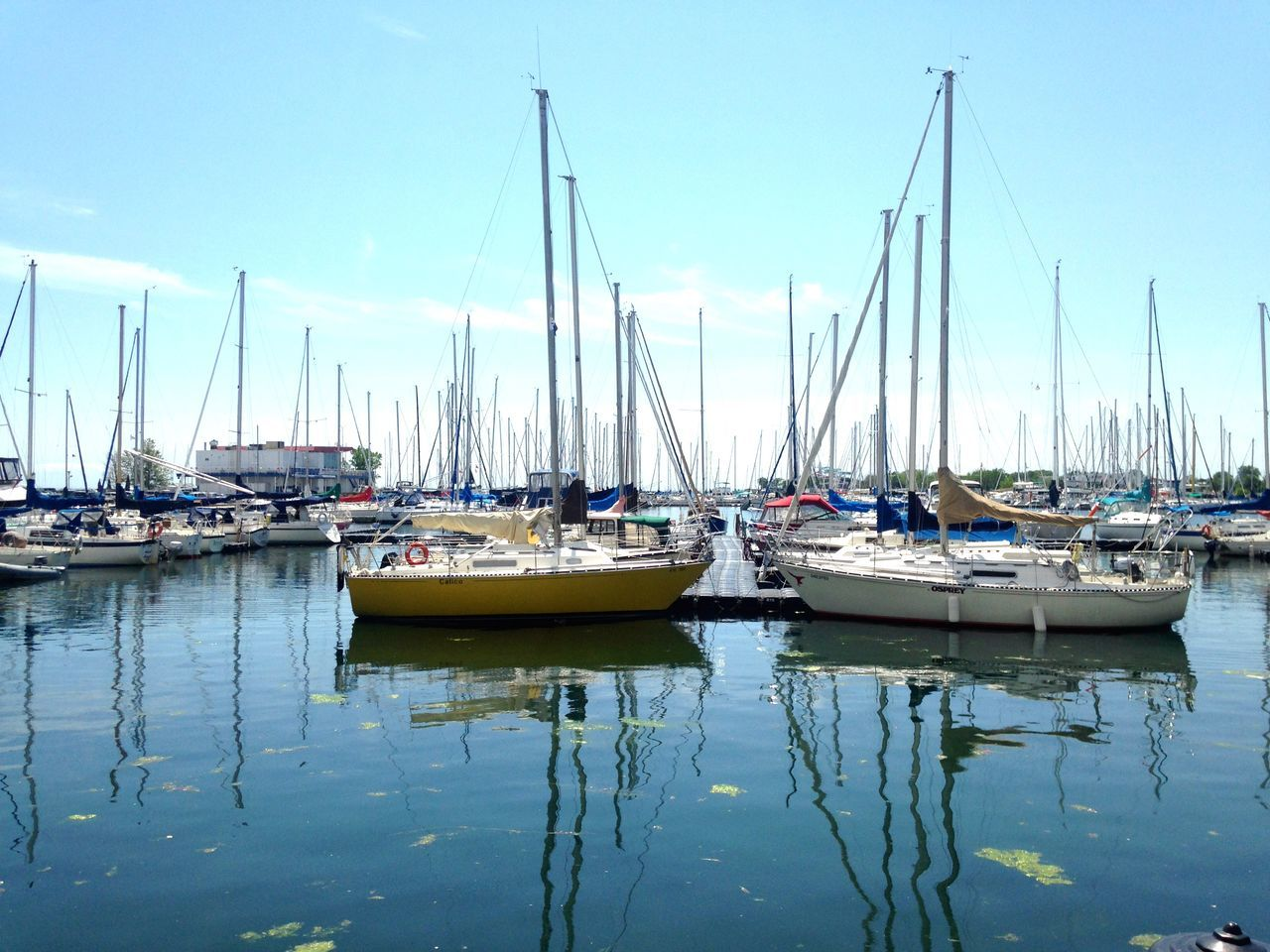Strolling along the Toronto Harbourfront Taking Photos of Yachts On A Sunny Afternoon Enjoying The Sun and Fresh Air