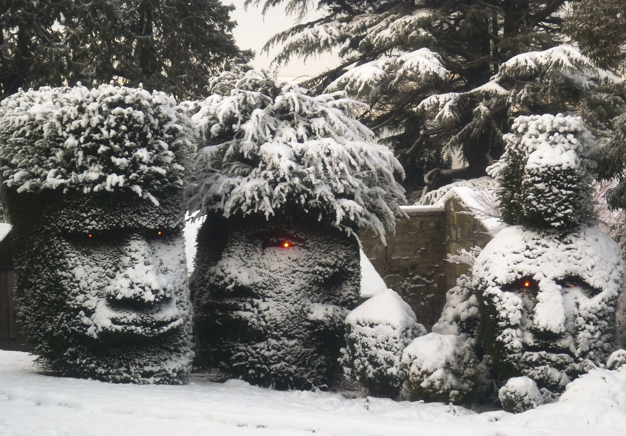 These unusual Hedges can be found on the outskirts of Edinburgh. Cold Temperature Covering Faces Hedge Nature Outdoors Red Eyes Sculpted Hedge Snow Tree Winter Winter