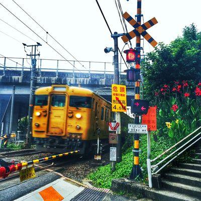 Railwaycrossing Landscape