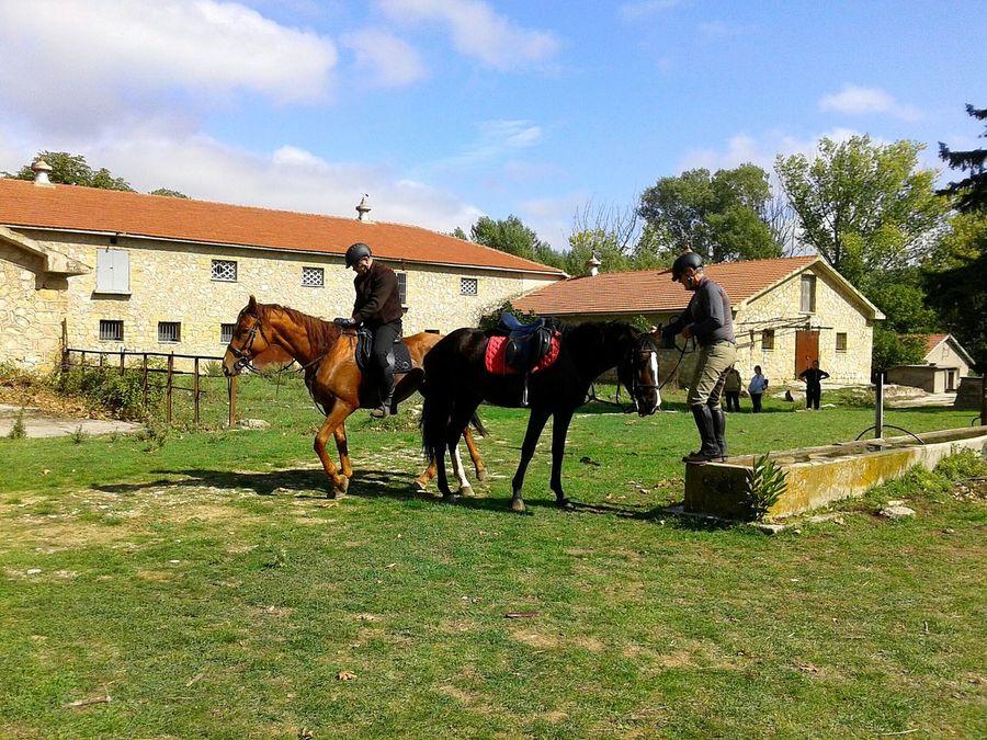 Sunday hiking Hikingadventures Horse Riding Mountainsarecalling Royal Palace