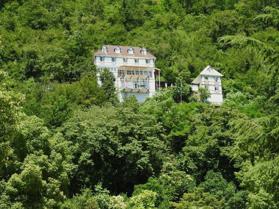 Green Paradise House In Mountains Greenyatmosphere Abkhazia Gagra Relaxing Enjoying Life Holidays ☀ Black Sea♥ Kavkaz