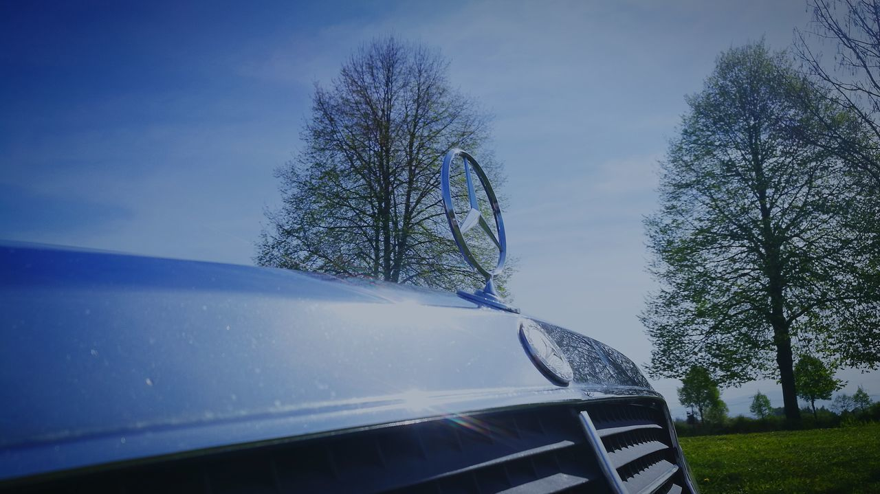 tree, land vehicle, car, transportation, mode of transport, no people, day, nature, sky, beauty in nature, bare tree, outdoors, close-up