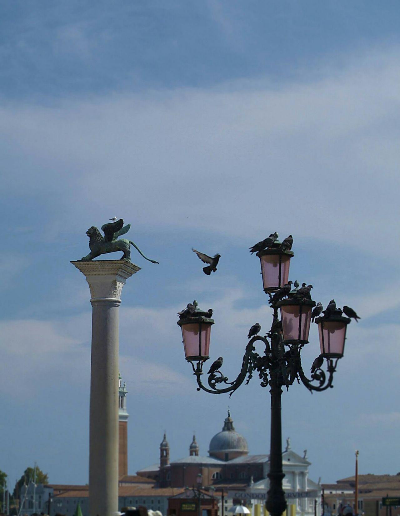Venice Venicepiazza Venicelife Street Life