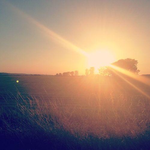 Sunset Summer Auleben Bestholiday countryside