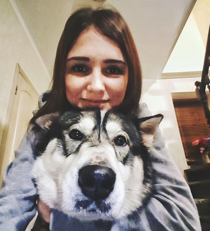 Dog❤ Dogs Of EyeEm Husky Puppy Tatarstan Russia Kazan Russian Federation Looking At Camera Dog Animal Domestic Animals Animal Themes Pets Puppy❤ Husky ♡ Me My Dog Is A Model