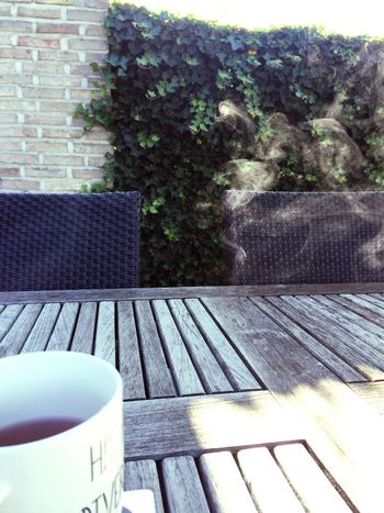 Hot tea in the mornin' Tea Breakfast Morning No People Outdoors