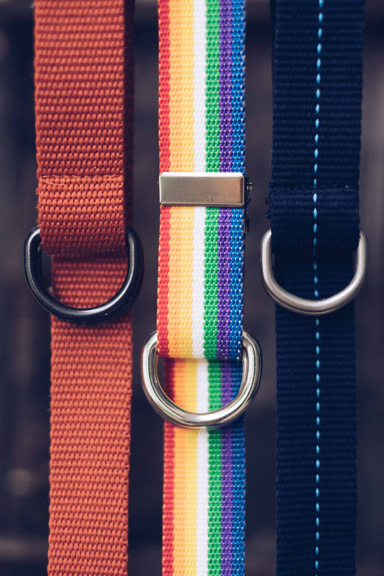 Belt  Close-up Collection Fabric Fashion Hanging Lines Loop Metal Multi Colored Odd Organized Personal Portrait Stitch Strap Style Texture Three Weave