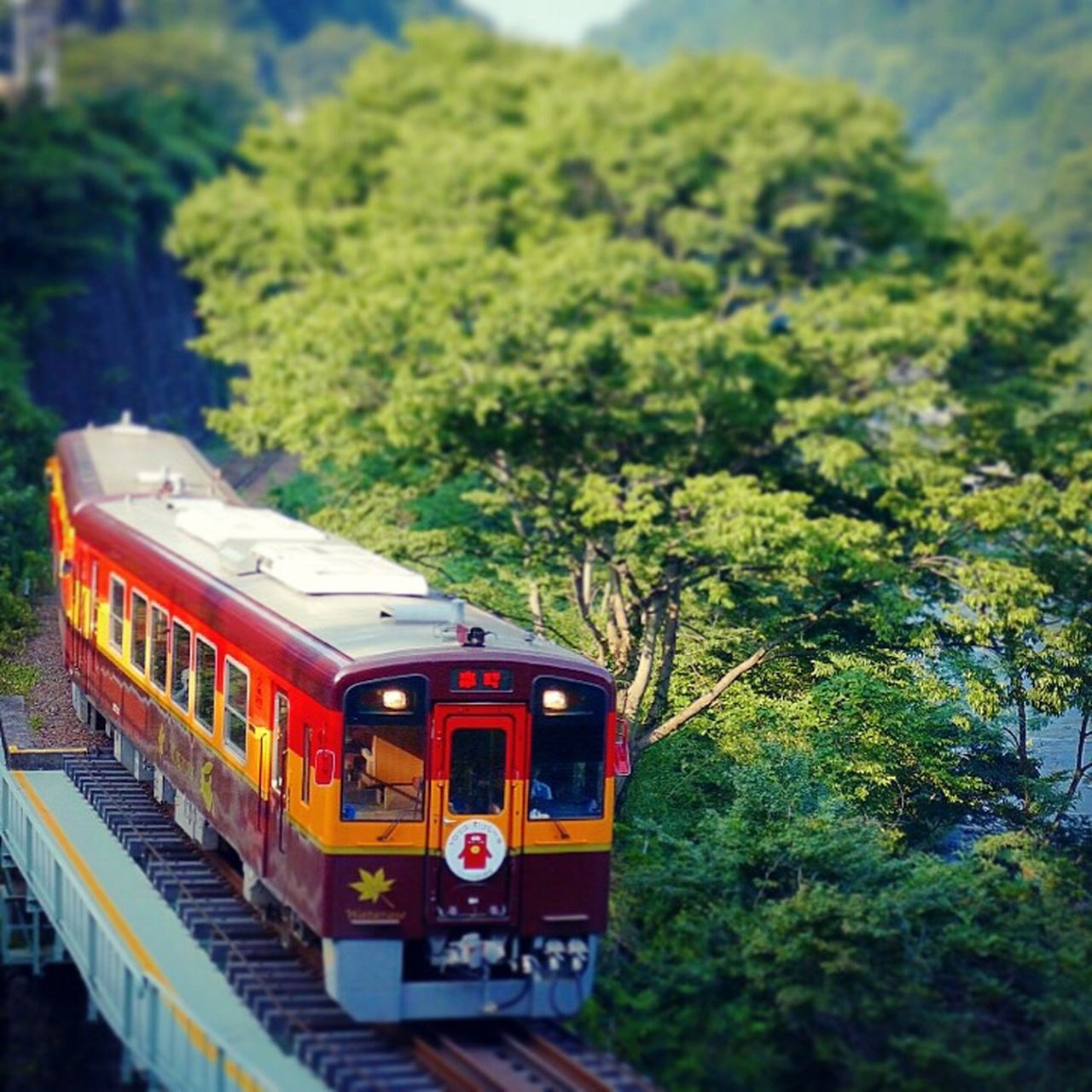 Train わたらせ渓谷鉄道 Transportation Train - Vehicle Mode Of Transport Public Transportation Rail Transportation Tree Railroad Track Passenger Train Locomotive No People Land Vehicle Steam Train Day Commuter Train Outdoors Nature Sky