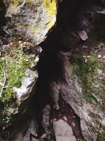 First Eyeem Photo Nature Rock - Object Rock Formation Nature Geology Beauty In Nature Tranquility No People Moss Day Cave Physical Geography Outdoors Adventure Tree Rock Face Close-up