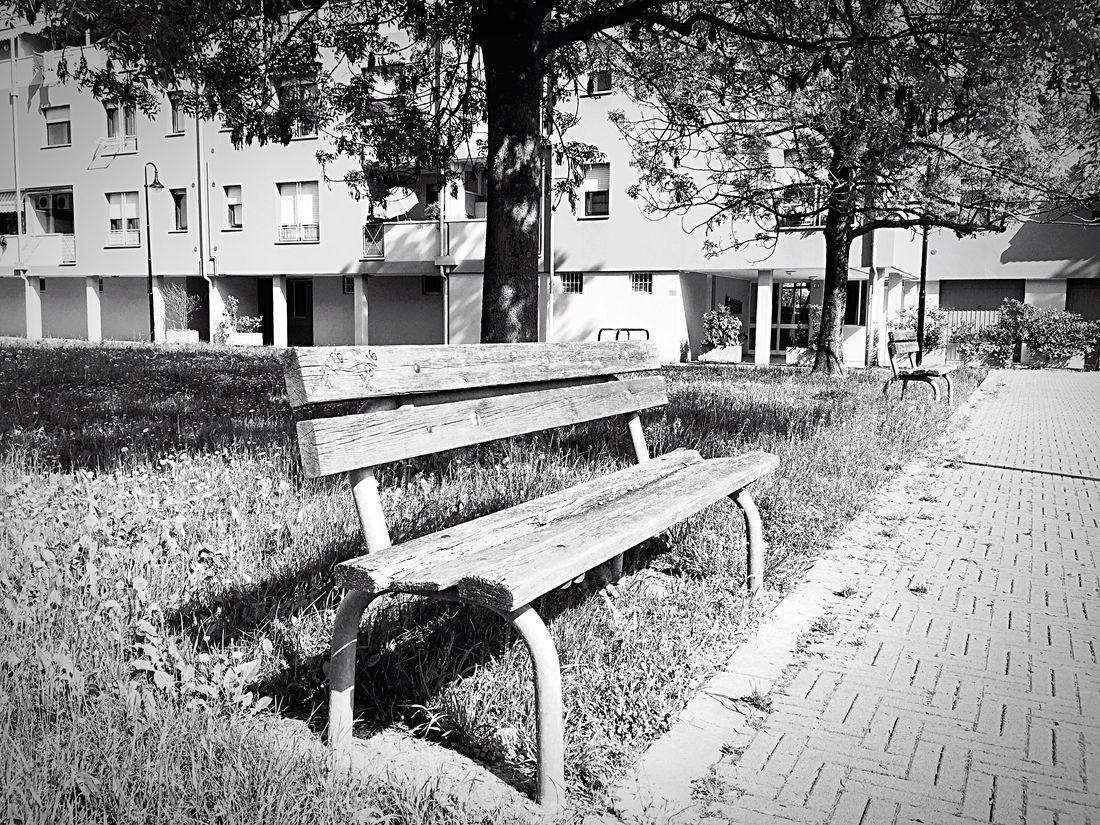 Solitude Emptyheart Primavera Spring Onlyme