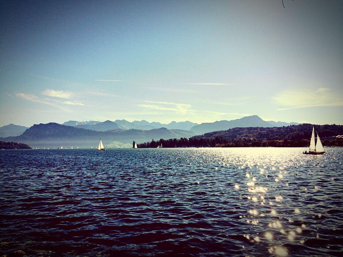 Taking Pictures Svizzera Nature Lake View Swiss Luzern Trip Great View