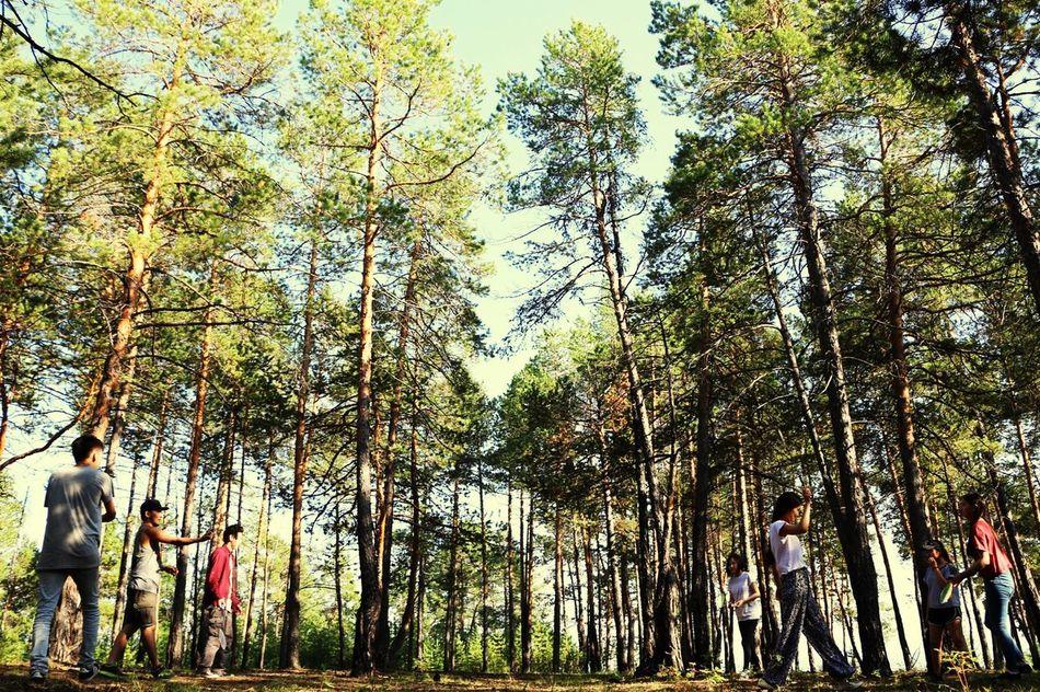 Yakutia Forest Nature Friends