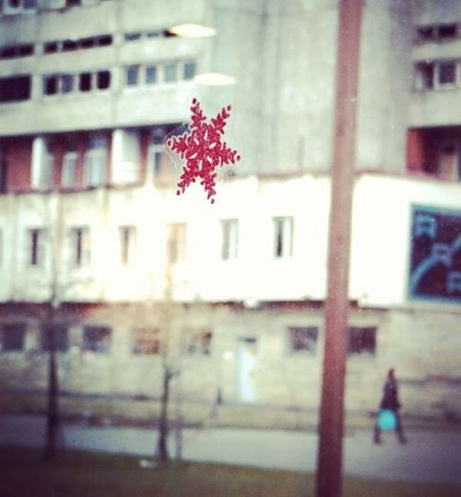 Kad aiz loga trūkst sniega... When the lack of snow outside the window... Ziema Sniegparsla Winter Snowflake Logs Window Withoutsnow Bezsniega Pilseta City Cityview Riga Riga Rigaphotos Latvija Latvia