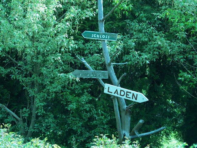 Arrow Symbol Communication Green Information Outdoors Pole Road Sign Sign Text Western Script Schloss Laden Schilder Laden