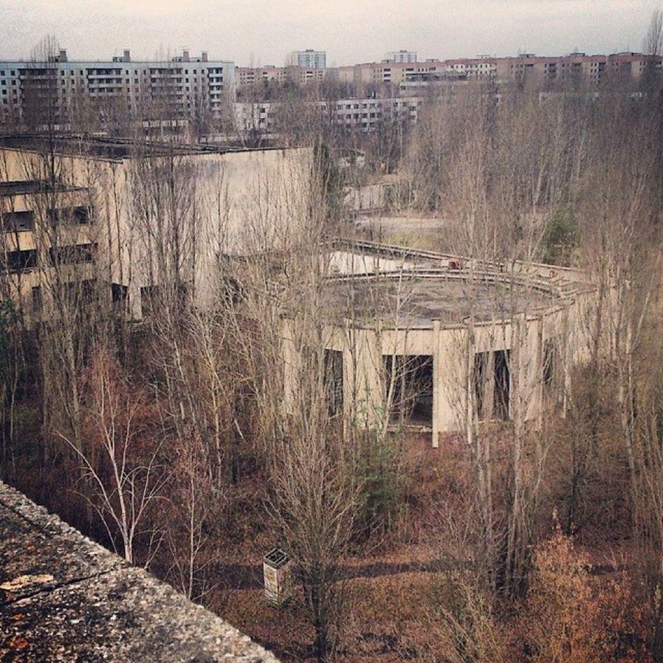 Летом, тут должно быть, бесподобно припять Мертвый_город Pripyat Abandoned_city dead_city radiation