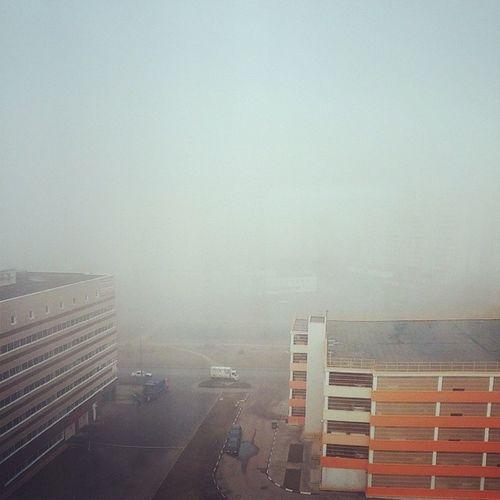 Проснулась в Сайлент Хилле  туман  Москва  утро
