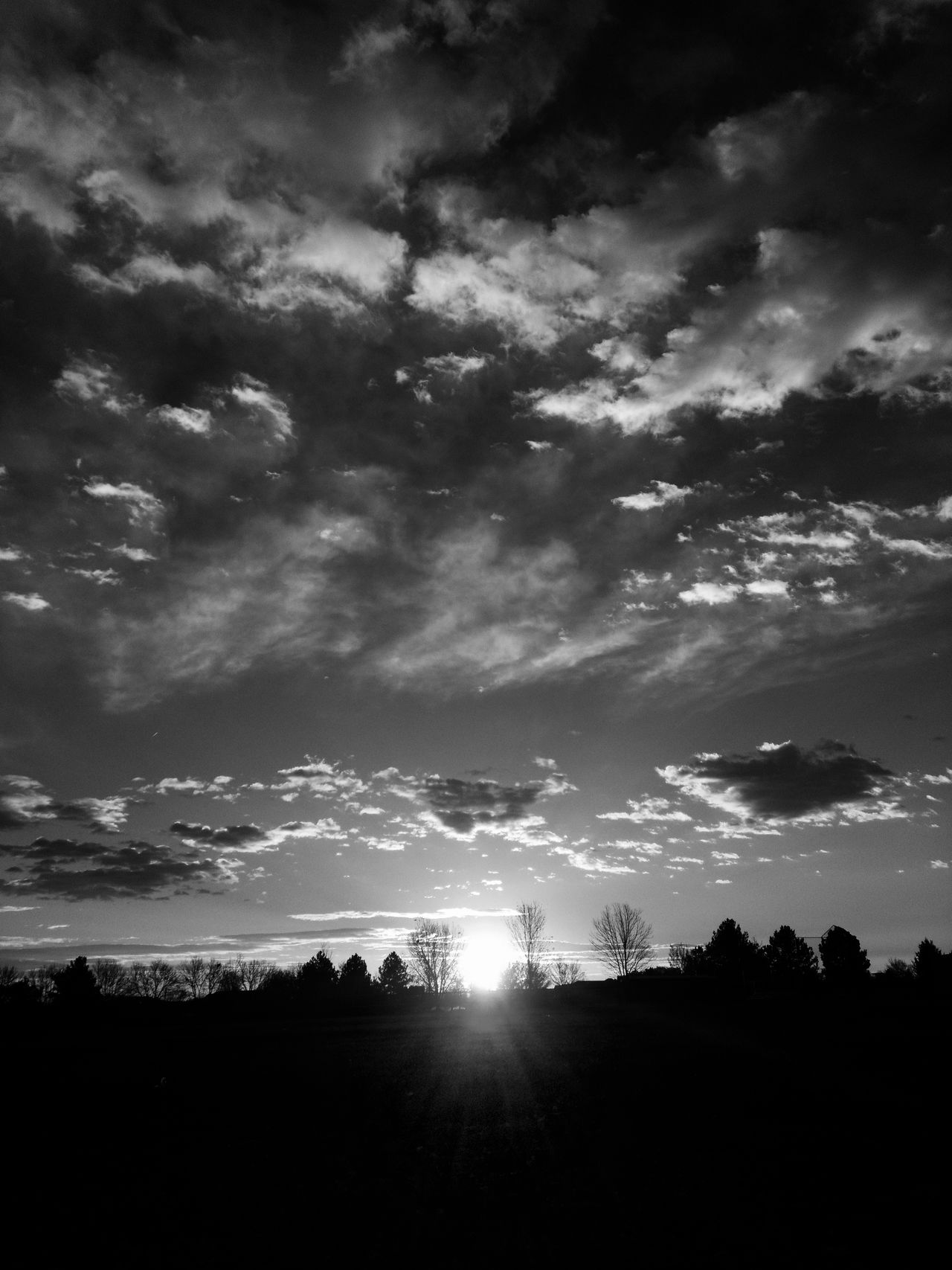 Morning In Mourning Morning Sun Macabre Photo Dramatic Sky Cloudscape Macabre Silhouette Warhol Inspired Sunrise Silhouettes Darkart Dark Art Park Photography Sunrise And Clouds Landscape Silhouette Sunrise Silhouette Sunrise_Collection Beauty In Nature Fall Collection Landscape_Collection Cloudporn Morning Light Illuminated Landscape October Anticolors