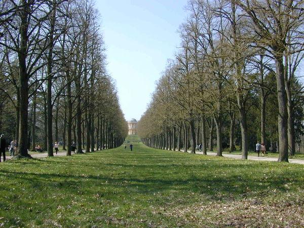 Beauty In Nature Green Color Growth Potsdam Potsdam Park Sanssouci Sanssouci Trees First Eyeem Photo