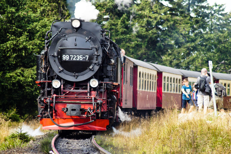 Adult Always Always Be Cozy Brocken Day Enjoy The New Normal Harz My Year My View Old Train Outdoors People Rail Transportation Rasender Roland  Steam Train Train Tree
