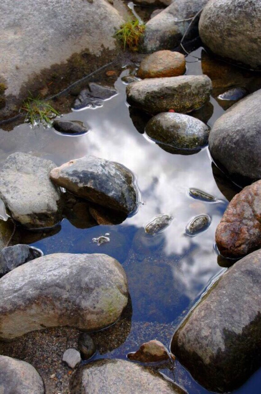pebble, stone - object, rock - object, no people, water, nature, outdoors, close-up, beach, day, beauty in nature, pebble beach, animal themes