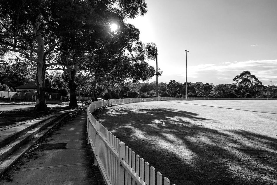 The oval Outdoors Day The Way Forward Nature Shadows & Lights Monochrome