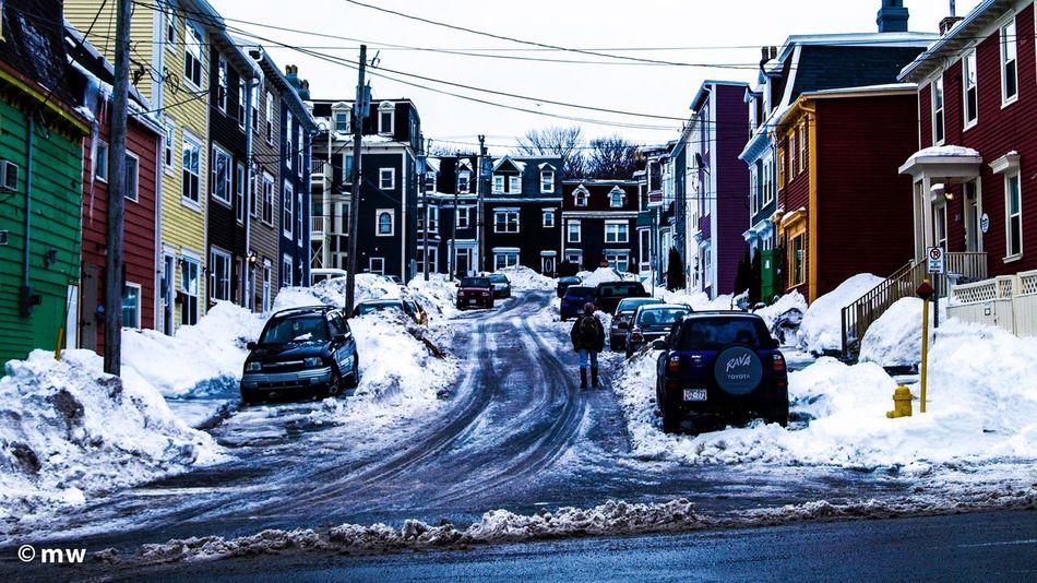 NFLD Newfoundland Saint John's Snow ❄ Snow Winter Streetphotography Wood Street