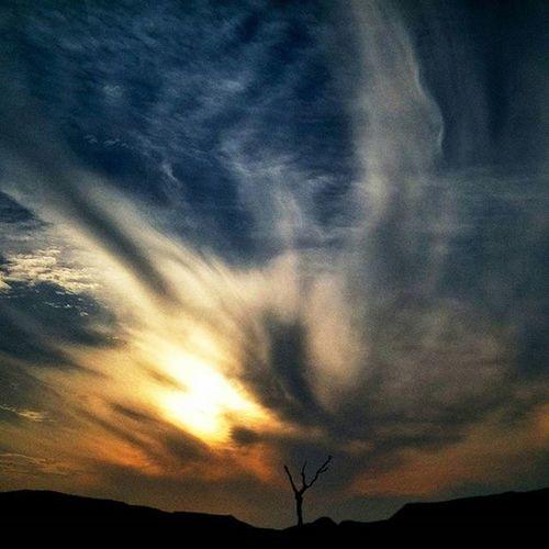 Sunset Birla Institute Of Technology, Mesra. Ranchi, Jharkhand, India. Everydayeverywhere Everydayindia Cityofcities Onepluslife Oneplus2 Nature Landscape Sky Lofi Art Tree Myfeatureshoot Ranchi Jharkhand India ASIA
