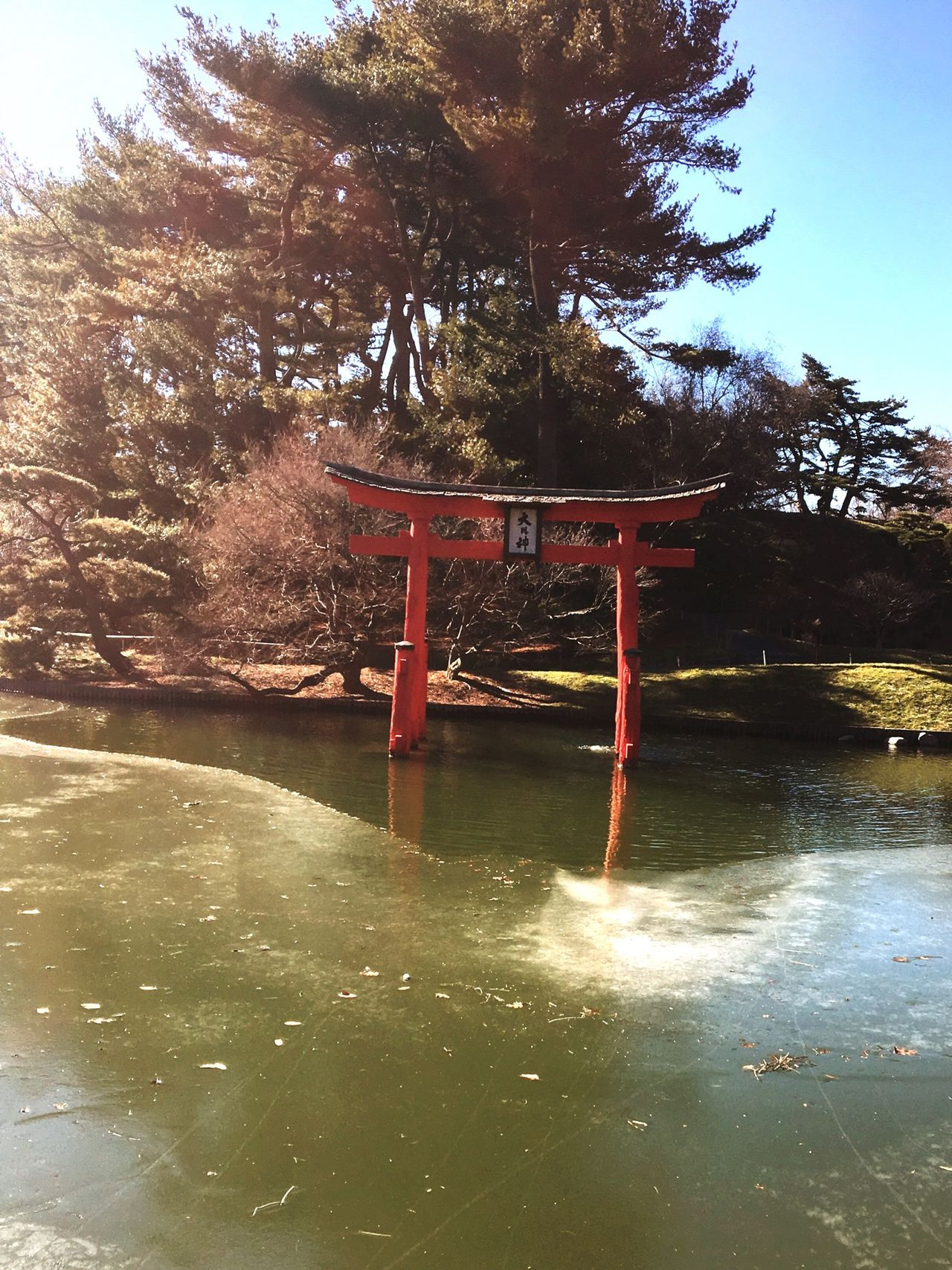 Brooklyn Botanical Gardens Asain Garden The Life Of Pablo City Photography NYC Photography Ice Red Forest Woods Pond Hello World Taking Photos Enjoying Life Another Step Taken In 2016 Winter Outdoors Just Because
