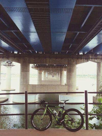 Zipp Roadbike Han River Wilier 한강리이딩~? wilier shimano105/garmin810/zipp404/kohosis/camelbak/RUDY