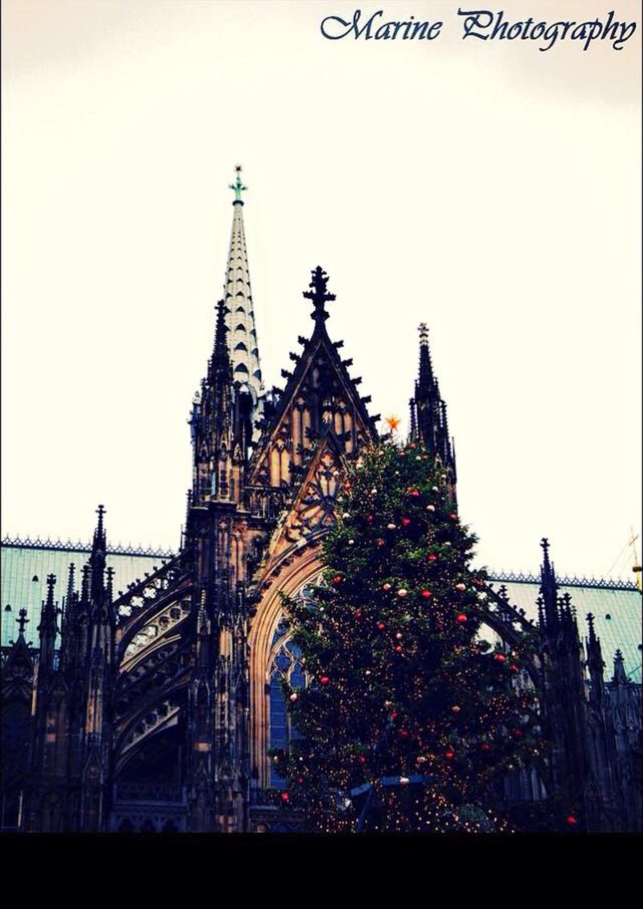 Cologne 2014. Cologne , Köln,  Marchédenoël Marinephotography