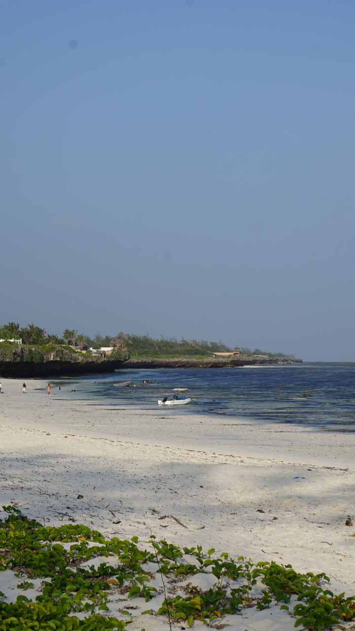 sea, beach, water, nature, tranquility, no people, clear sky, outdoors, beauty in nature, sand, scenics, day, sky, bird