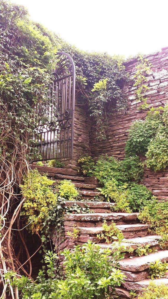 English Countryside Hestercombe House Somerset England Secret Garden Nature Beautiful Ironwork  Nature On Your Doorstep Enjoying Life