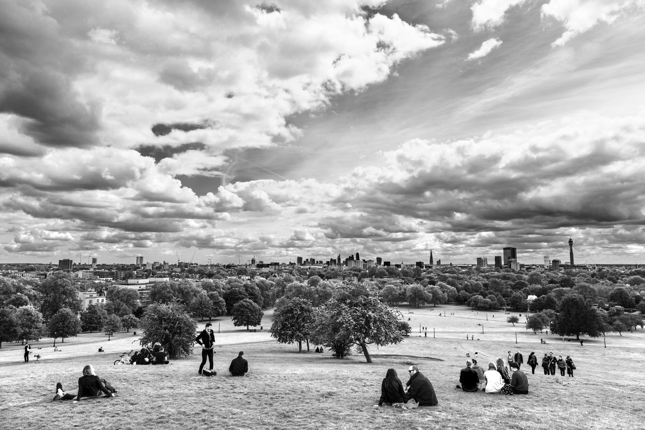 cloud - sky, sky, large group of people, real people, tree, men, leisure activity, nature, women, lifestyles, outdoors, day, architecture, built structure, large group of animals, building exterior, beauty in nature, city, people