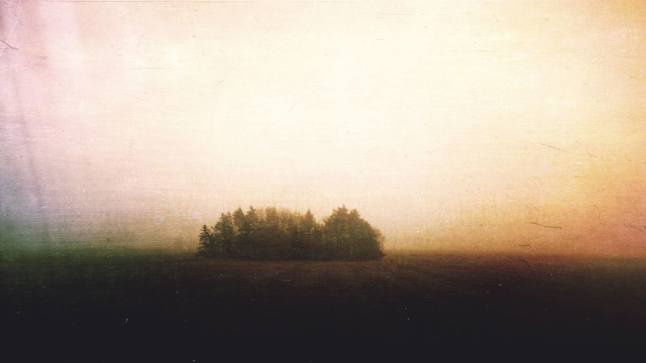 Tranquility Landscape Back Lit Woods Edited