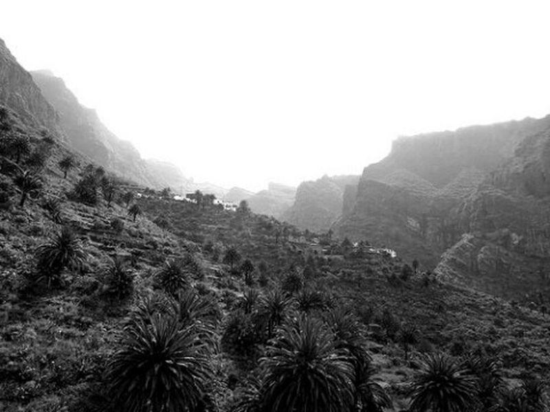 Barranco de Masca, Tenerife. Blackandwhite Taking Photos Black & White Black And White Monochrome Tenerife Canarias Canary Islands Blancoynegro Canariasviva